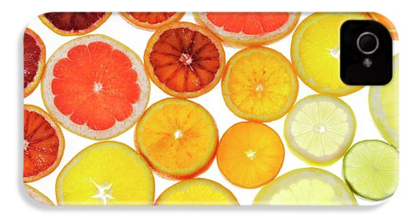 Slices Of Citrus Fruit IPhone 4 / 4s Case by Cordelia Molloy