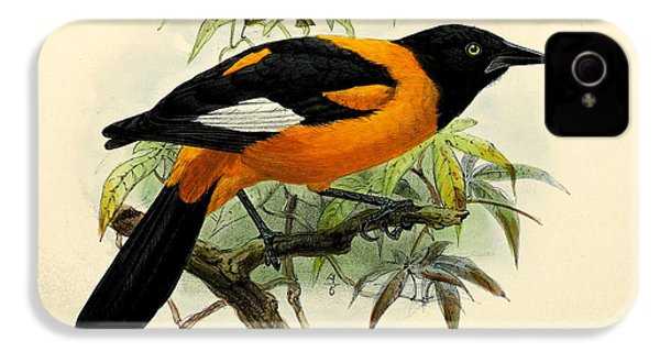 Small Oriole IPhone 4 / 4s Case by J G Keulemans
