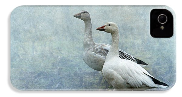 Snow Geese IPhone 4 / 4s Case by Angie Vogel