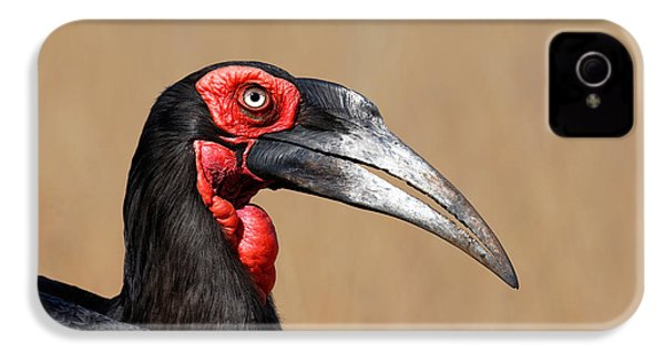 Southern Ground Hornbill Portrait Side View IPhone 4 / 4s Case by Johan Swanepoel