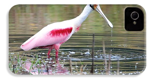 Spoonbill In The Pond IPhone 4 / 4s Case by Carol Groenen