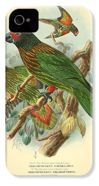 Streaked Lory IPhone 4 / 4s Case by J G Keulemans