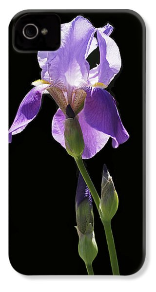 Sun-drenched Iris IPhone 4 / 4s Case by Rona Black
