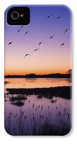 Sunrise At Assateague - Wetlands - Silhouette  IPhone 4 / 4s Case by Shara Lee