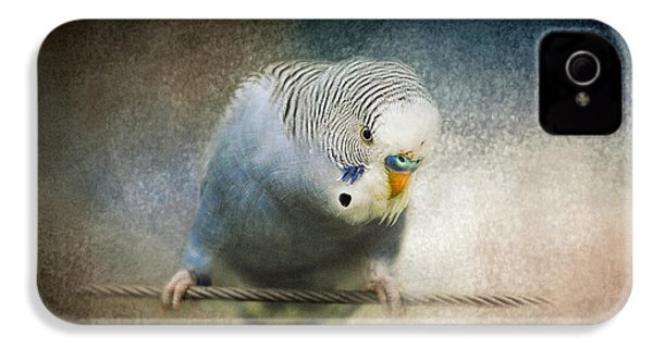 The Budgie Collection - Budgie 3 IPhone 4 / 4s Case by Jai Johnson