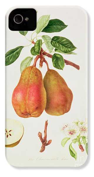 The Chaumontelle Pear IPhone 4 / 4s Case by William Hooker