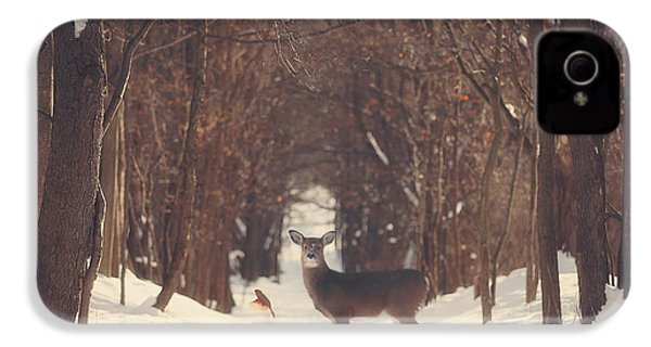 The Forest Of Snow White IPhone 4 / 4s Case by Carrie Ann Grippo-Pike