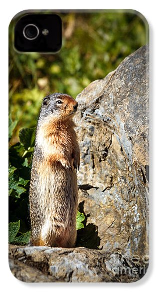 The Marmot IPhone 4 / 4s Case by Robert Bales