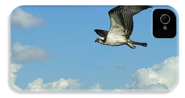 The Osprey 2 IPhone 4 / 4s Case by Ernie Echols