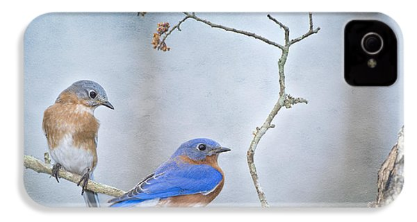 The Presence Of Bluebirds IPhone 4 / 4s Case by Bonnie Barry