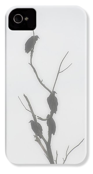 Their Waiting Four Black Vultures In Dead Tree IPhone 4 / 4s Case by Chris Flees