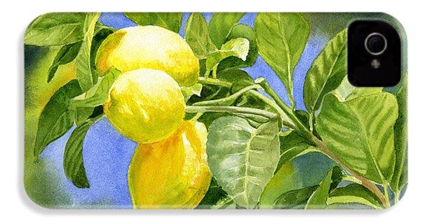 Three Lemons IPhone 4 / 4s Case by Sharon Freeman