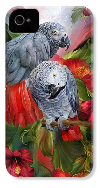 Tropic Spirits - African Greys IPhone 4 / 4s Case by Carol Cavalaris