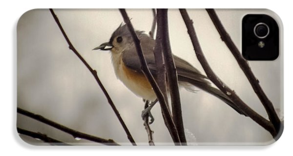 Tufted Titmouse IPhone 4 / 4s Case by Karen Wiles