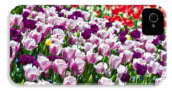 Tulips Field IPhone 4 / 4s Case by Sebastian Musial