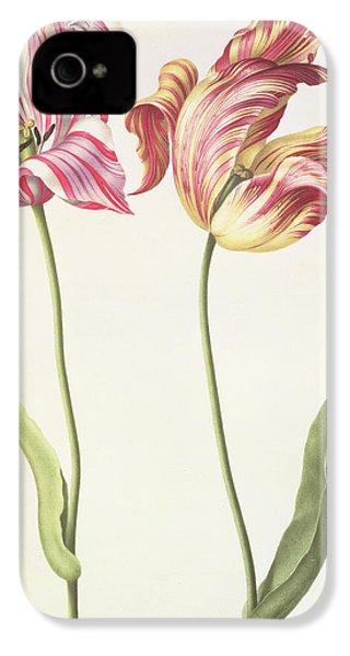 Tulips IPhone 4 / 4s Case by Nicolas Robert