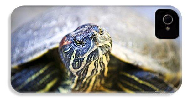 Turtle IPhone 4 / 4s Case by Elena Elisseeva