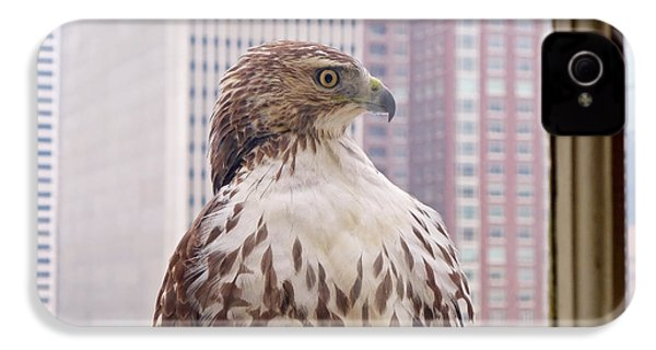 Urban Red-tailed Hawk IPhone 4 / 4s Case by Rona Black