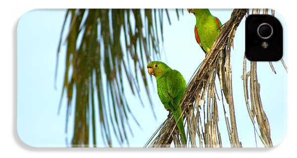 White-eyed Parakeets, Brazil IPhone 4 / 4s Case by Gregory G. Dimijian, M.D.
