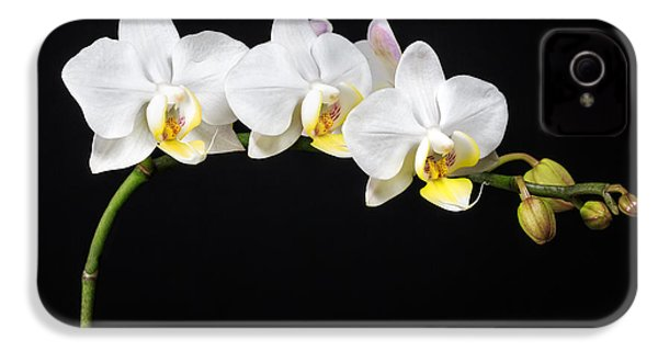 White Orchids IPhone 4 / 4s Case by Adam Romanowicz