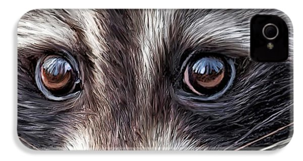 Wild Eyes - Raccoon IPhone 4 / 4s Case by Carol Cavalaris