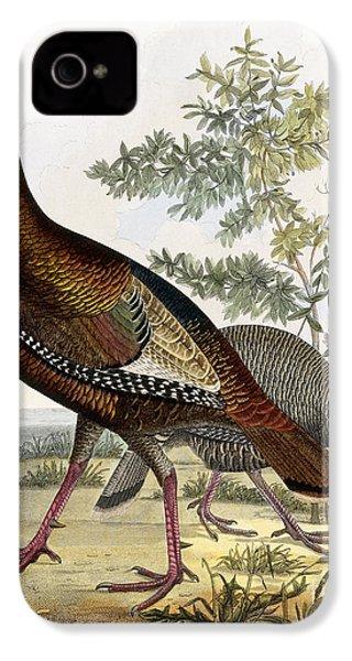 Wild Turkey IPhone 4 / 4s Case by Titian Ramsey Peale