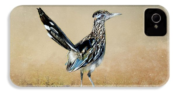 Greater Roadrunner IPhone 4 / 4s Case by Betty LaRue
