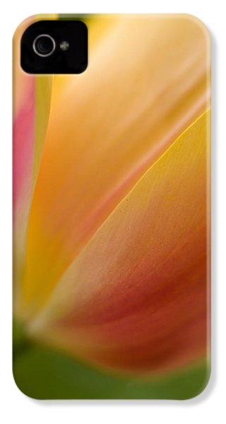 April Grace IPhone 4 / 4s Case by Mike Reid