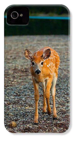 Bambi IPhone 4 / 4s Case by Sebastian Musial