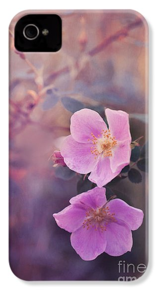 Prickly Rose IPhone 4 / 4s Case by Priska Wettstein