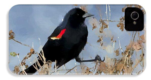 Redwing Blackbird IPhone 4 / 4s Case by Betty LaRue