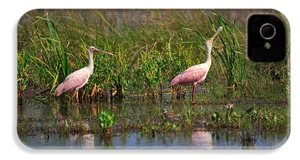 Roseate Spoonbills IPhone 4 / 4s Case by Louise Heusinkveld