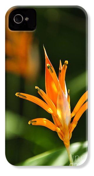 Tropical Orange Heliconia Flower IPhone 4 / 4s Case by Elena Elisseeva