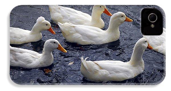 White Ducks IPhone 4 / 4s Case by Elena Elisseeva
