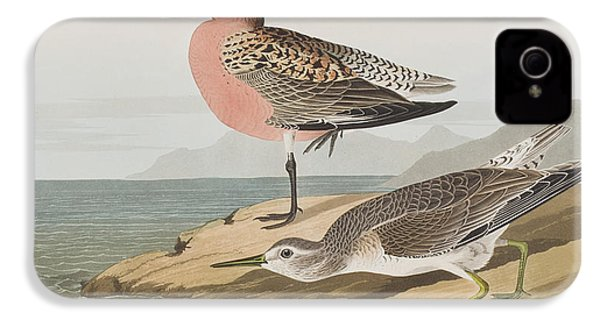 Red-breasted Sandpiper  IPhone 4 / 4s Case by John James Audubon