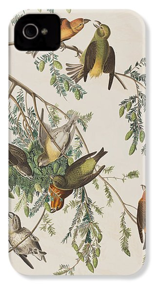 American Crossbill IPhone 4 / 4s Case by John James Audubon