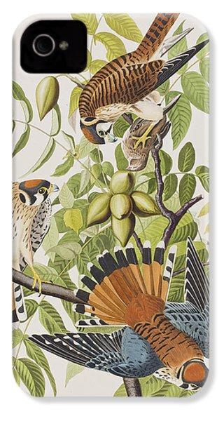 American Sparrow Hawk IPhone 4 / 4s Case by John James Audubon