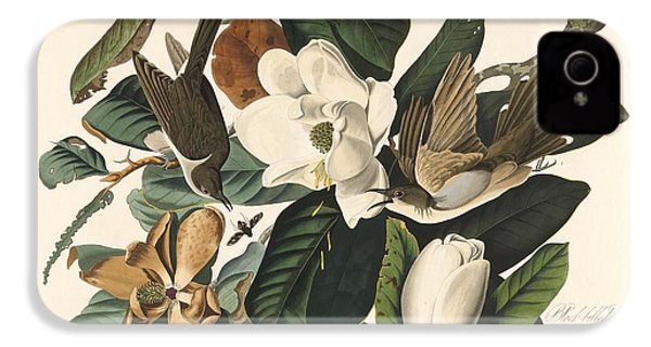 Black-billed Cuckoo IPhone 4 / 4s Case by John James Audubon