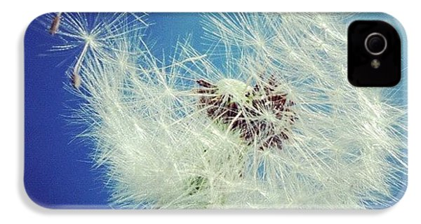 Dandelion And Blue Sky IPhone 4 / 4s Case by Matthias Hauser