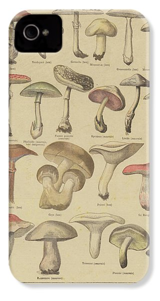 Edible And Poisonous Mushrooms IPhone 4 / 4s Case by French School