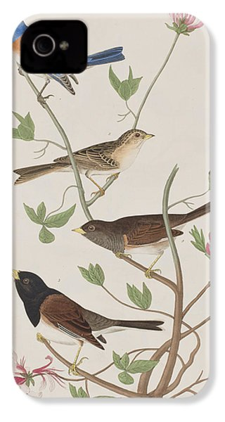 Finches IPhone 4 / 4s Case by John James Audubon