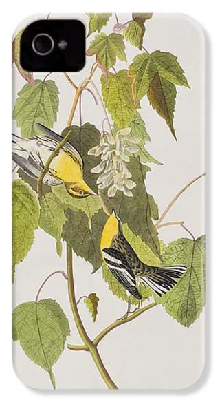 Hemlock Warbler IPhone 4 / 4s Case by John James Audubon