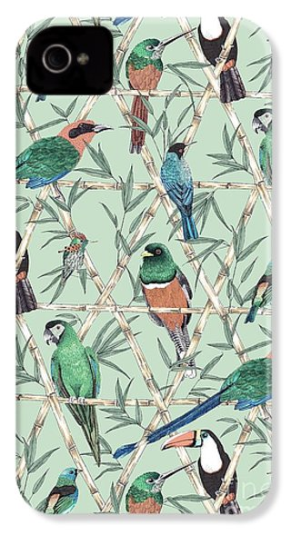 Menagerie IPhone 4 / 4s Case by Jacqueline Colley