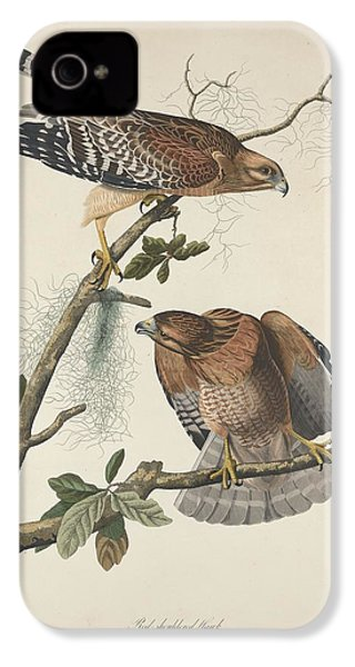 Red Shouldered Hawk IPhone 4 / 4s Case by John James Audubon