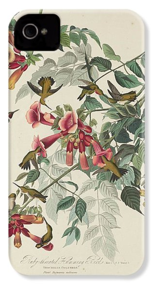 Ruby-throated Hummingbird IPhone 4 / 4s Case by John James Audubon