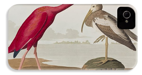 Scarlet Ibis IPhone 4 / 4s Case by John James Audubon