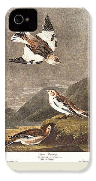 Snow Bunting IPhone 4 / 4s Case by John James Audubon