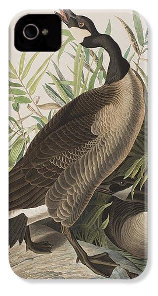 Canada Goose IPhone 4 / 4s Case by John James Audubon