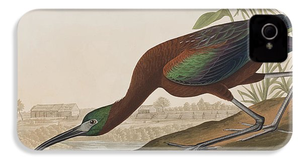 Glossy Ibis IPhone 4 / 4s Case by John James Audubon