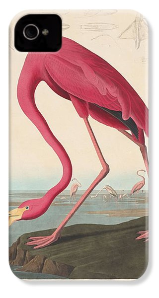 American Flamingo IPhone 4 / 4s Case by John James Audubon